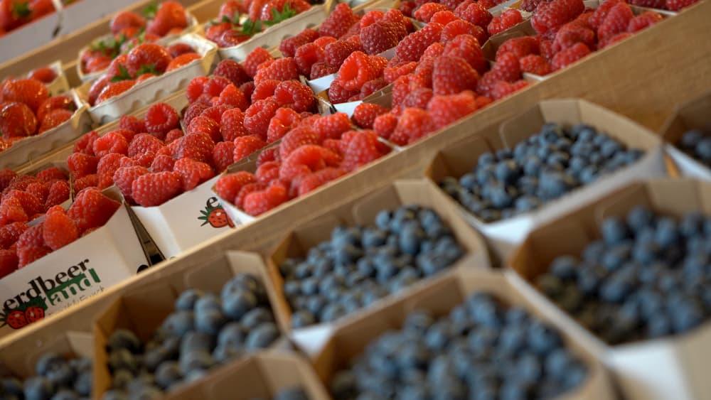 Unsere Produkte Erdbeeren Heidelbeeren im Verkauf von Erdbeerland Ernst & Funck
