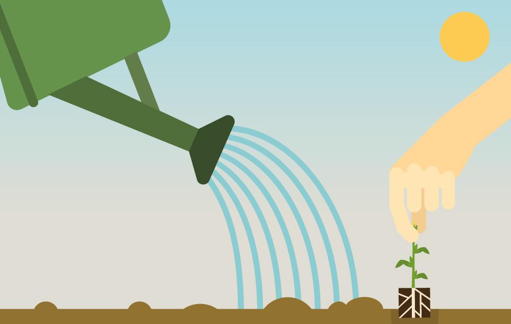 Comic Bild Spargel Setzling wird bei Sonnenschein gepflanzt und gegossen von Erdbeerland Ernst & Funck