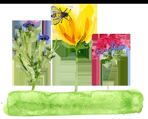 Gemaltes Bild von Blumen und einer Biene Wasserfarben Erdbeerland Ernst & Funck