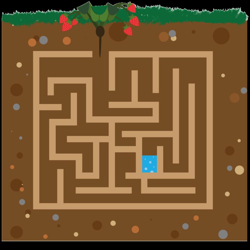 Labyrinth zum Malen des Weges einer Erdbeerwurzel zur Pflanze durch die Erde von Erdbeerland Ernst & Funck