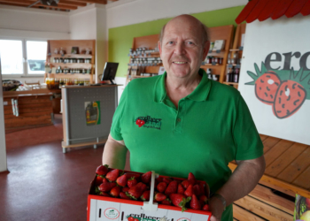 Erdbeerverkäufer mit frischen Erdbeeren im Saarland bei Erdbeerland Ernst