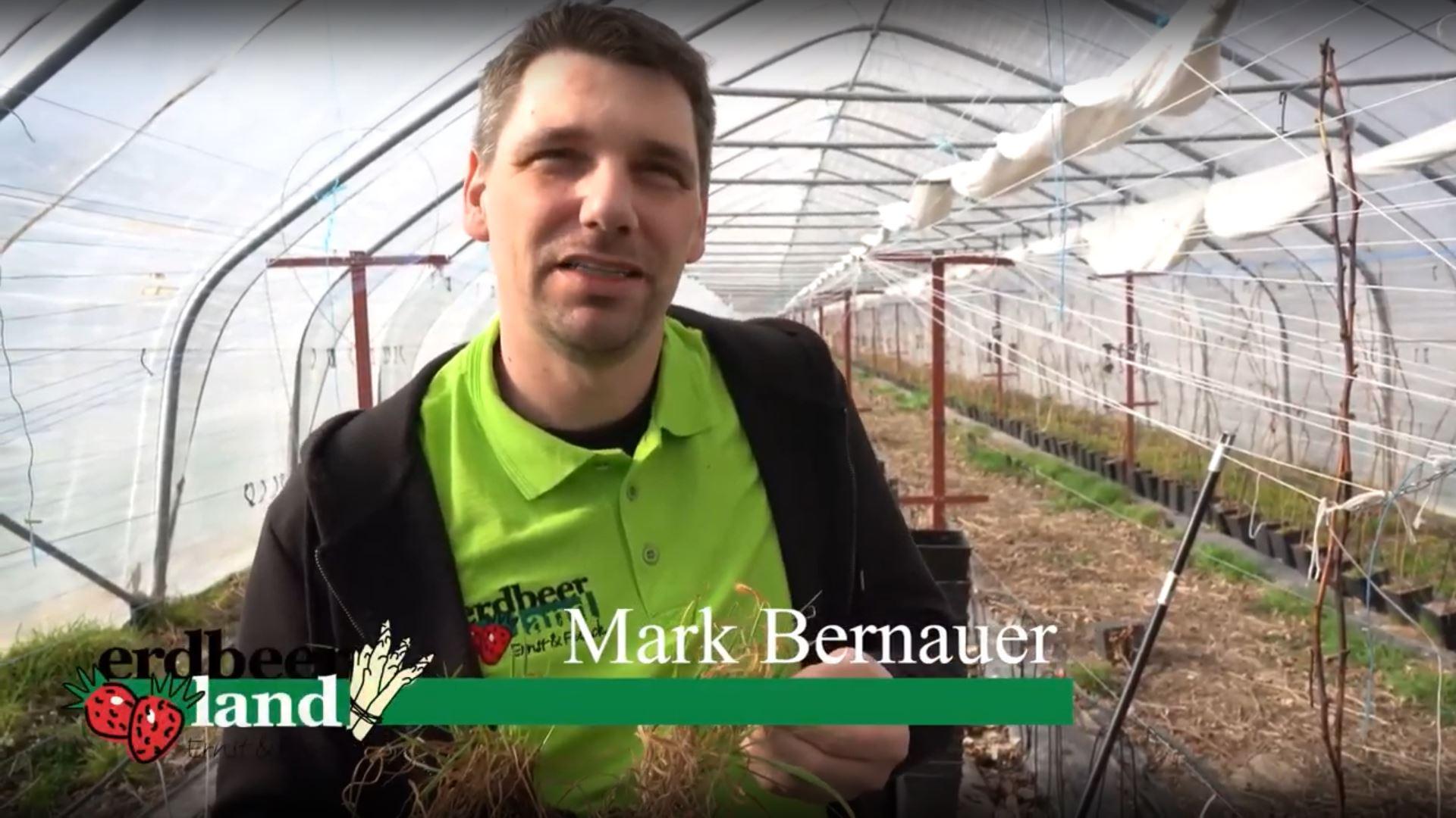 Mark Bernauer in einem Reportage-Video von Erdbeerland Ernst & Funck
